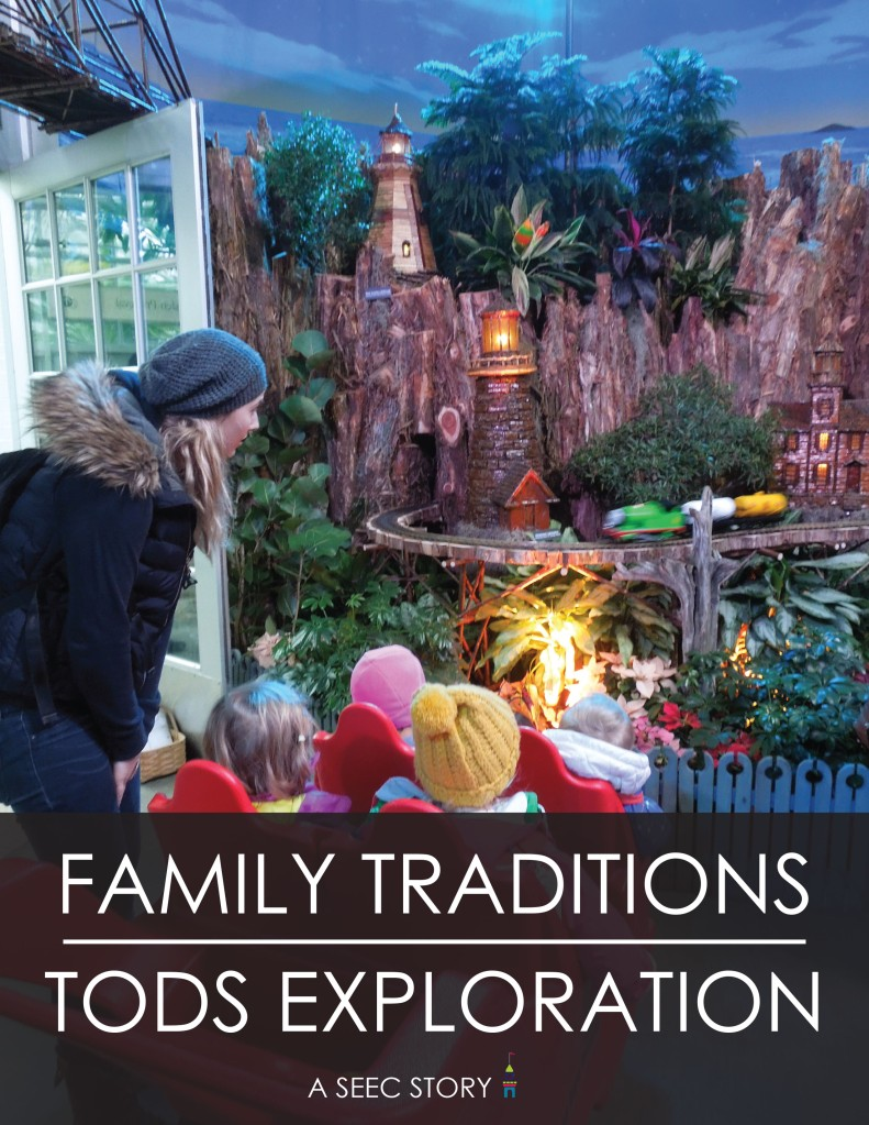 Toucans_Cover_Family_Traditions