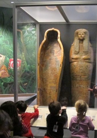 egypt-crop