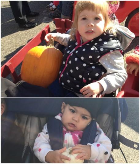 pumpkin-at-farmers-market
