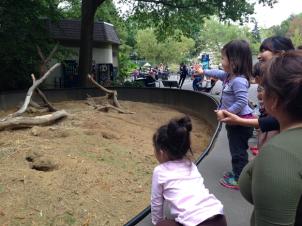 SEEB Zoo