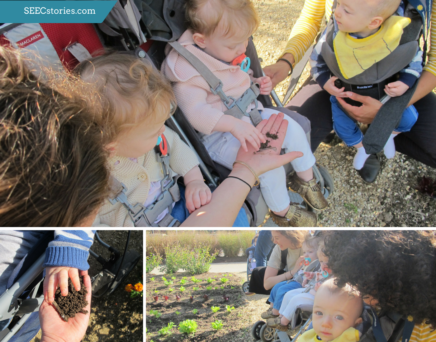 Variety of pictures of children exploring soil on a farm