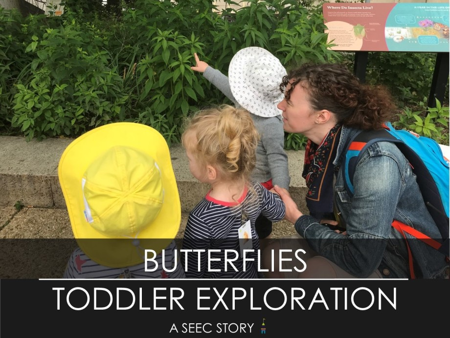 toddlers, pollinators, butterflies, gardens, Smithsonian